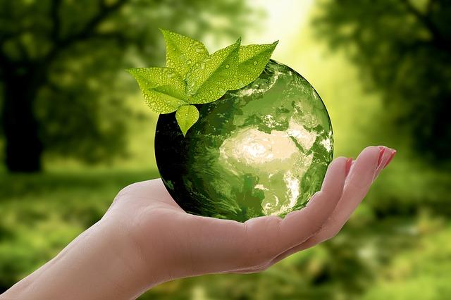 avantages et bienfaits du shampoing bio pour l'environnement